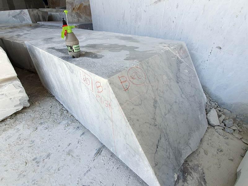 Marmo Bianco C Carrara